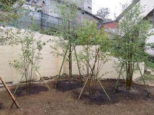 Garden-cote-06_20201004180201