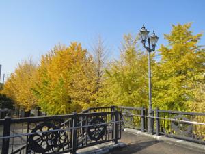 Green-road-park-02_20201118130001
