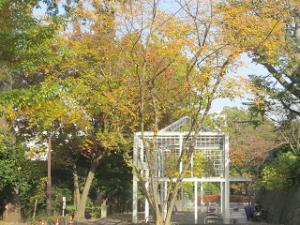 Green-road-park-07_20201118130001