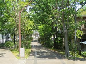 Green-rode-park-01
