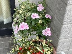 Mothers-garden-02_20211016171301