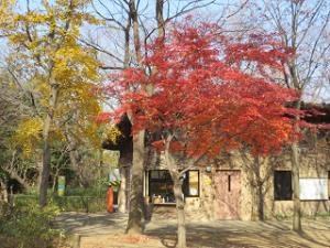 Nature-park-09_20201213144201