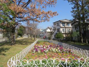 Ryokudo-park-01_20200221125801
