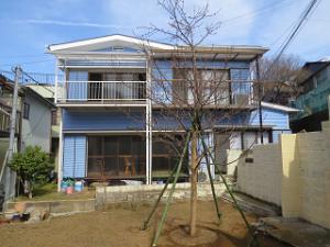 Sakura-04