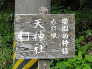 Shinshirosi-01