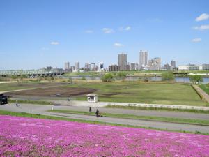 Sibazakura-03_20210329192201
