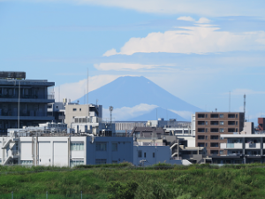 Toshinogyopark-08