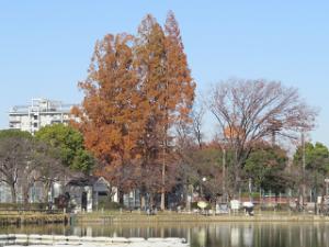 Ukima-park-015